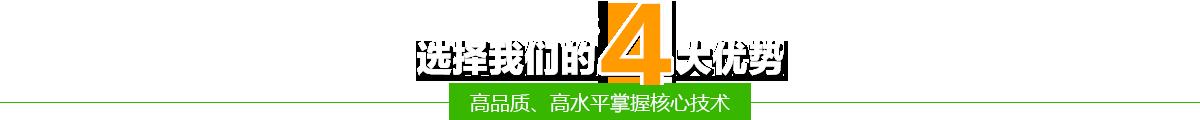 選(xuan)擇我(wo)們的四(si)大優勢-高品質(zhi)挺过去、高水(shui)平掌握核心技ji) /></h2> <div class=